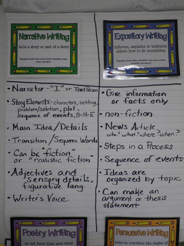 how to write an expository paragraph example