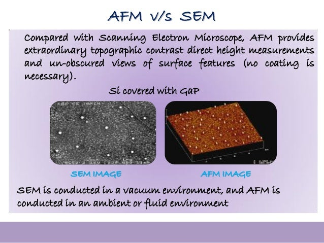 example of data obtained from atomic force microscopy