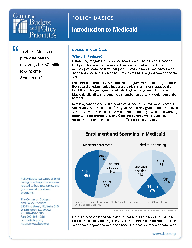 example of a policy brief onn elections