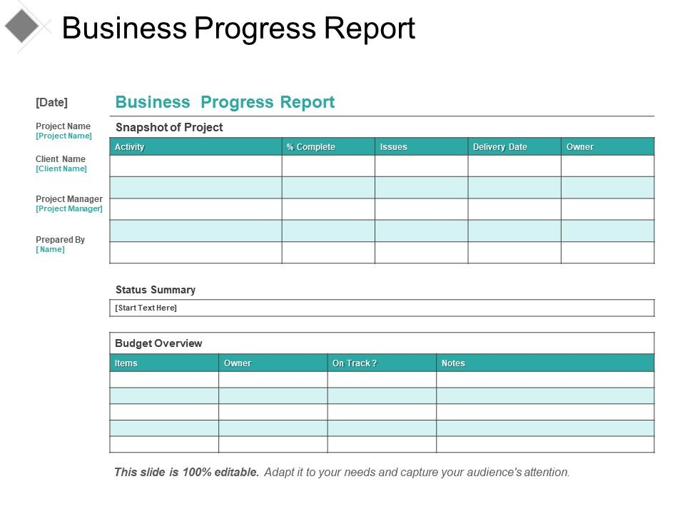 example of progress report in business