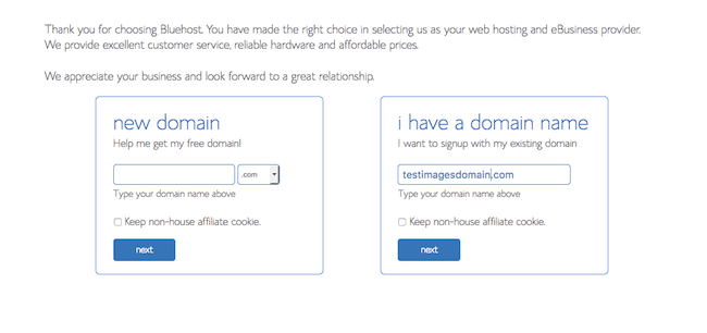 give an example of a domain name