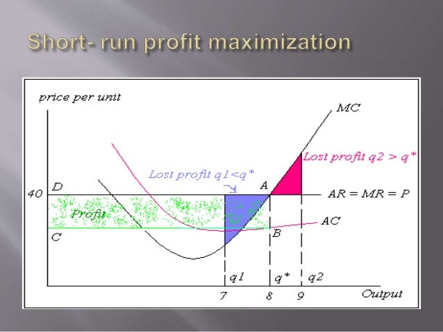 profit maximization example perfect competition